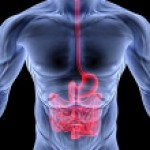 IPA questions scope of conclusions of study that found no effect of probiotics on diarrhea