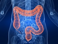 UK National Health Service undertakes probiotic colon study