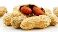 The use of a probiotic and small doses of peanut protein showed surprising results