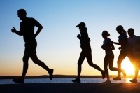 Gut microbiota influence on endurance exercise analyzed in new review