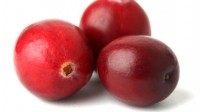 Japan will be first port of call in new Indena-Pharmatoka cranberry partnership