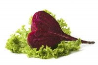 Beetroot shows heart health benefits for overweight older people: Study