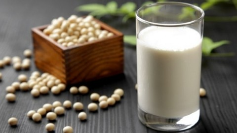 Soy milk research papers